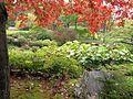 Montréal Jardin botanique 578 (8214212028).jpg