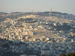 Mount of Olives Jerusalem.jpg