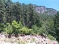 Mt. Olympus - panoramio (7).jpg