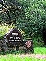 Muir woods.Marin county - panoramio.jpg