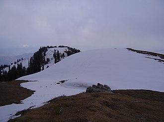Mukeshpuri - The top of Mukeshpuri peak.