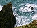 Mull of Galloway - panoramio (15).jpg