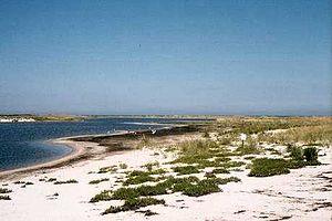 Muskeget Island - Muskeget Island