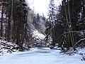 Na ľade - panoramio.jpg