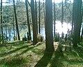 Na wysokim brzegu Brdy - panoramio.jpg