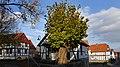 Naturdenkmal Dorflinde in Frankenhain.jpg