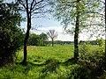 Naturschutzgebiet Unteres Estetal - Bei Heimbruch der Durchblick ins Tal.jpg