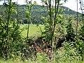 Neckar zwischen Sulz und Horb - panoramio.jpg