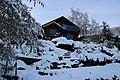 Neige 29 janvier 19 (31) (46094012445).jpg