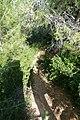 Nes-Ziona-Kurkar-Hills-076.jpg