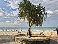 Noosa Heads beach, Queensland 06.jpg