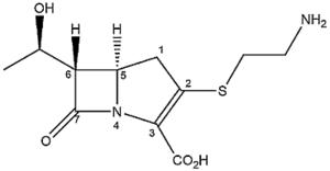Thienamycin - Figure 1. The Structure of thienamycin (with systematic numbering