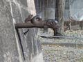 Nuremberg city wall tiergaert inner fountain fish f s.jpg