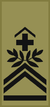 OR-7b - Sergent-Major Chef