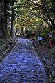 Ogamiyamajinja Okunomiya 03.jpg