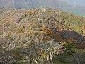 Ojigahata, Taga, Inukami District, Shiga Prefecture 522-0321, Japan - panoramio (4).jpg