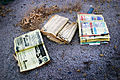 Old Phonebooks at Salton Sea.jpg