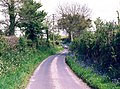 Old drove road, Fawley - geograph.org.uk - 4214.jpg