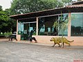 Onça e cachorros dando boas vindas na Lanchonete Paraíso no Km-217 da SP-333 - panoramio.jpg