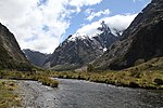 On the way to Milford Sound 12 (30791331114).jpg