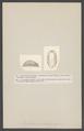 Onchidorus leachii - - Print - Iconographia Zoologica - Special Collections University of Amsterdam - UBAINV0274 005 08 0029.tif