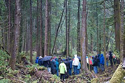 Oregon Board of Forestry tour 2009.jpg