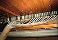 Organ-1910molertubular3.JPG