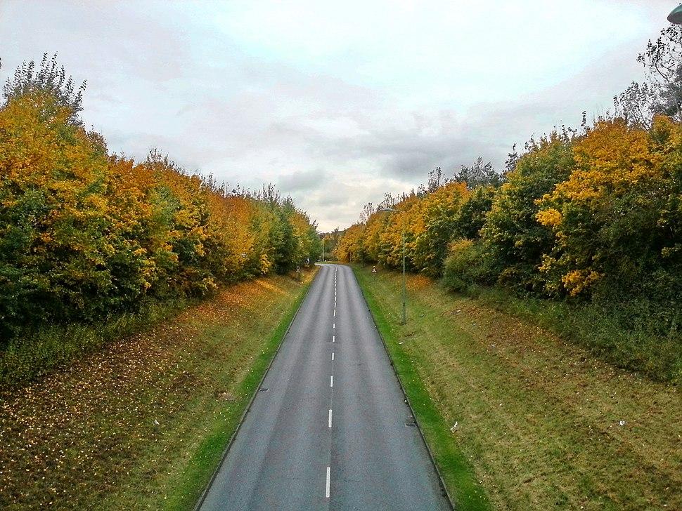 Ortwell Road toward Mount Road, Bury St Edmunds, 25 Oct, 2012