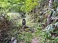 Osakacho Ochiai, Gero, Gifu Prefecture 509-3111, Japan - panoramio (23).jpg