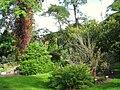 Oslo Botanical Garden - IMG 8952.jpg