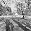 Overzicht - Lochem - 20338989 - RCE.jpg