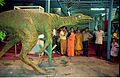 Oviraptor - Dinosaurs Alive Exhibition - Science City - Calcutta 1995-June-July 549.JPG