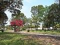 PLAZA - panoramio (4).jpg