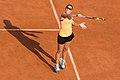 P Ormaechea - Roland-Garros 2012-IMG 3705.jpg