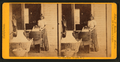 Paiute squaw - Yo Semite Valley, from Robert N. Dennis collection of stereoscopic views.png