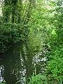 Paradise Nature Reserve - geograph.org.uk - 789901.jpg