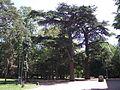 Parc de la cité scolaire Augustin-Thierry.JPG