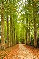 Park of Versailles 02.jpg