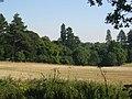Parkland, Oxenfoord. - geograph.org.uk - 49114.jpg