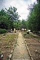 Parque Biológico de Vinhais - Portugal (31856376484).jpg