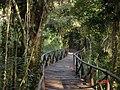 Parque Cinturão Verde, São Francisco do Sul, SC.JPG