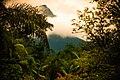 Parque Estadual Pico Marumbi.jpg