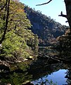 Parque Nacional Huerquehue 1.jpg