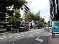 Passeig de Manuel Girona - 20200828 163720.jpg