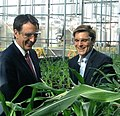 Pawlenty in Pioneer research greenhouse (5687646922).jpg