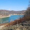 Pedlar WMA-Mason Lake-square.jpg