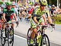 Peloton - Tour de France 2015 - Haastrecht - Zuid-Holland - Pays-Bas (19439372745).jpg