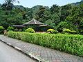 Penang Botanic Gardens (22).JPG