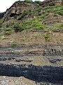 Permian-Triassic boundary at Frazer Beach, NSW.jpg