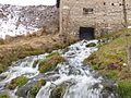 Pester Plateau, Serbia - 0232.CR2.jpg
